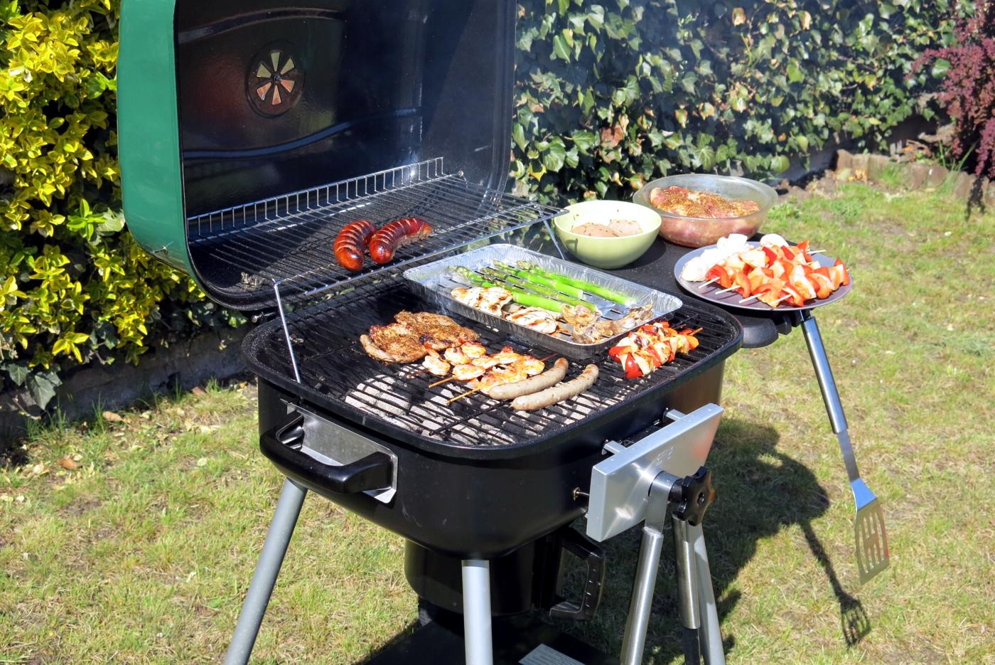 Test grilla w glowego blooma robson hw b2020b castorama moje opinie - Grille barbecue castorama ...